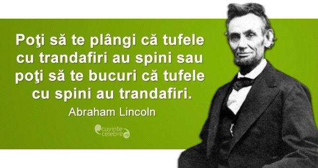 Citat-Abraham-Lincoln
