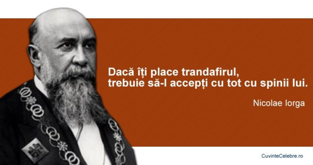 Citat-Nicolae-Iorga1